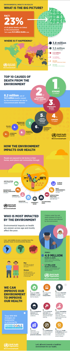 infographic from the World Health Organization