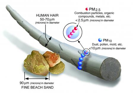 particulate pollution sizes