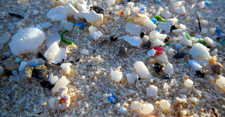 beach with microplastics